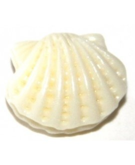 Entre-pieza resina conchita crema 10x12mm, paso 1mm