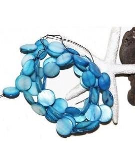 Cuentas de conchas agua dulce natural 14mm,  paso 1mm, precio por ristra de 40cm