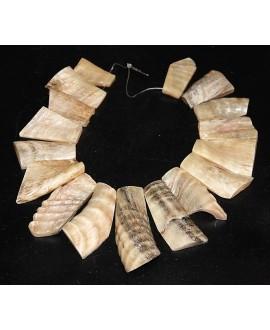 Conjunto de 17 piezas cuerno de carnero pulidas y talladas, Ghana
