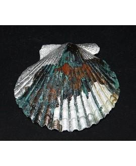 Colgante concha marina 85x90mm, patina artesanal